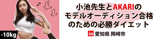 ダイエットモニター日記